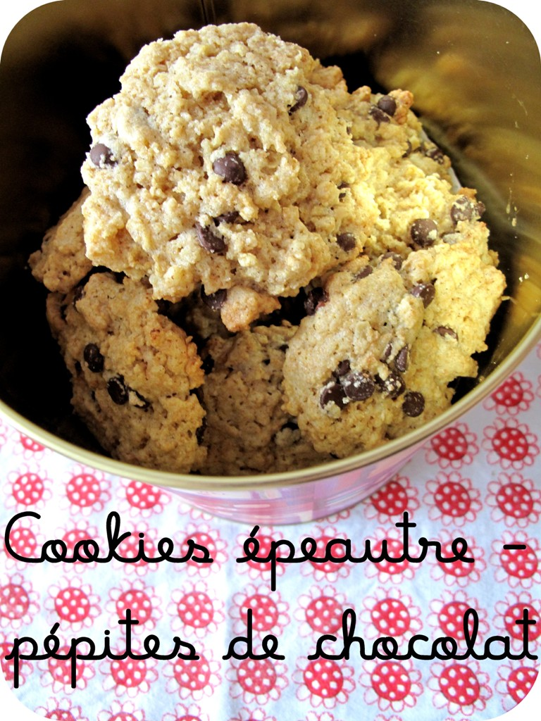 cookiespeautrechocolat007.jpg